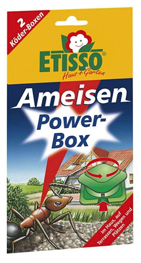 Etisso Ameisen Power-Box 2 Stück