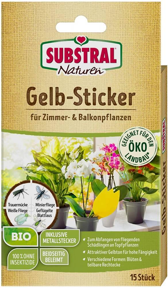 Naturen Gelbstecker 10 Stück
